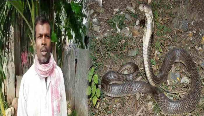 Cobra का इंतकाम, इस शख्स को 72 बार काट चुका है सांप, बदले के पीछे है यह खास वजह