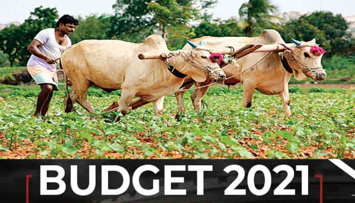 Budget 2021: farmers may get more money in PM Kisan Samman Nidhi scheme in budget