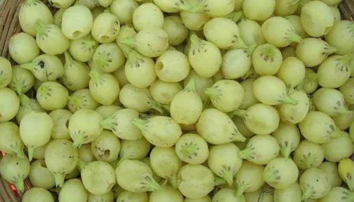 इस फल से बनती है देशी शराब, इस तरह करेंगे इस्तेमाल तो होंगे अनेक फायदे