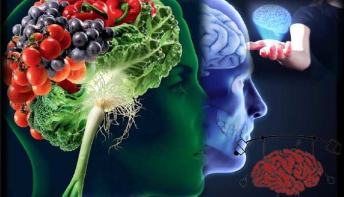 these things include in your diet to keep the mind sharp and healthy
