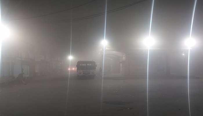 Rajasthan के कई जिलों में छाया घना कोहरा, 10 फीट से कम की Visibility