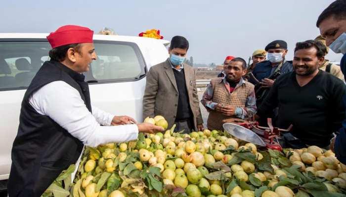 अखिलेश का BJP पर तंज, 'इलाहाबादी प्रयागराजी अमरूद' हो गया क्या?