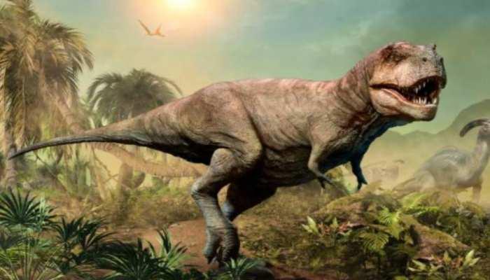 Dinosaur On Moon: इंसानों से पहले चांद पर पहुंचे थे डायनासोर, जानिए ऐसा कैसे हुआ