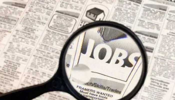 सरकारी नौकरी की तलाश कर रहे युवा यहां जानें कहां-कहां निकली है भर्ती, जानें सब डिटेल्स