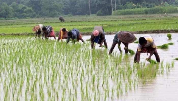 खुशखबरी: इन 20 लाख किसानों के खातों में सरकार भेज रही है 400 करोड़ रुपए, आप ऐसे कर सकते हैं चेक