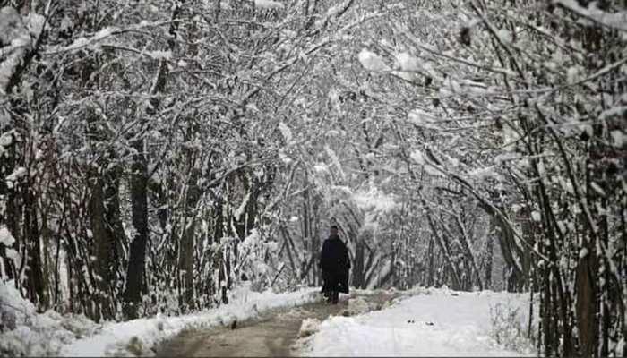 Jammu-Kashmir: Srinagar में सर्दी ने तोड़ा 3 दशक का रिकॉर्ड, शून्य से 8.8 डिग्री नीचे पहुंचा पारा