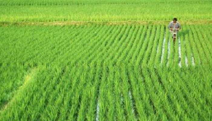 Bihar: गांव में पहुंचेंगे वैज्ञानिक, Farmers को सिखाएंगे मौसम के अनुकूल खेती के तरीके