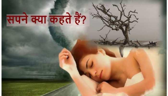 सपने में देखा है सूखा पेड़ तो जानिए क्या होने वाला है?