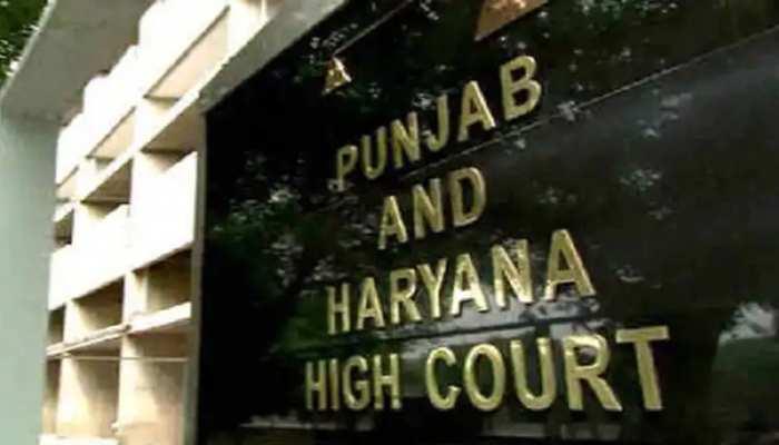 High Court का अहम फैसला: निकाह के लिए बालिग होना जरूरी नहीं, 18 से कम उम्र की लड़की खुद चुन सकती है जीवनसाथी