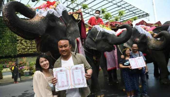 Valentine's Day: Thailand के सालाना सामूहिक विवाह समारोह में दिखा गजब नजारा, इस रस्म की हो रही है चर्चा