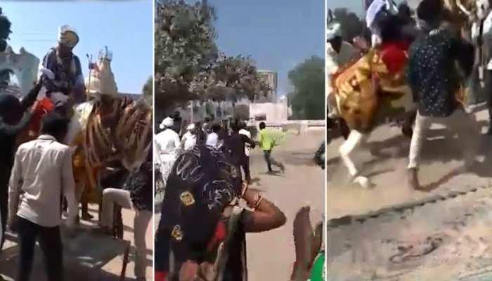 बारात में बज रहा था बैंड-बाजा और अचानक दूल्हे को लेकर भाग गई घोड़ी, देखिए VIDEO