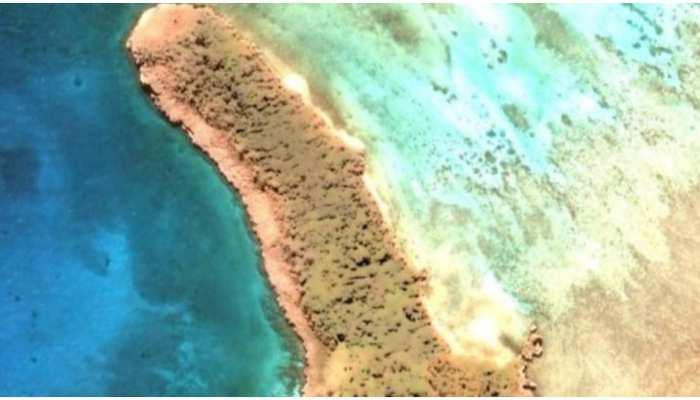 Google Map पर Joleen Vultaggio को मिला नया Island, शेप देख हुईं हैरान