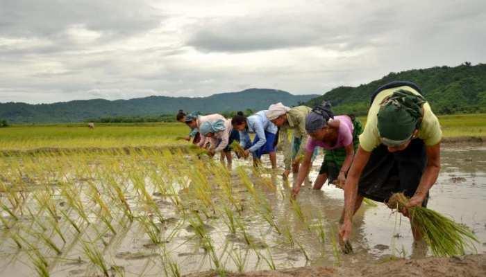 UP Budget 2021: PM का 'पर ड्रॉप मोर क्रॉप' का सपना होगा पूरा, यूपी के किसानों को मिलेंगे ये लाभ