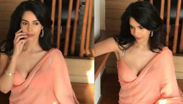 Mallika Sherawat Got Her Latest Photoshoot In Saree Photos Viral On Social Media