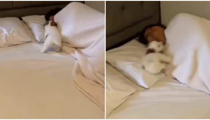 Viral Video: सुबह Alarm से भी आंख न खुलती हो तो आजमाएं यह तरीका