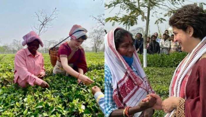 Assam Election 2021 priyanka gandhi dance and meet tea workers at sadhuru tea garden