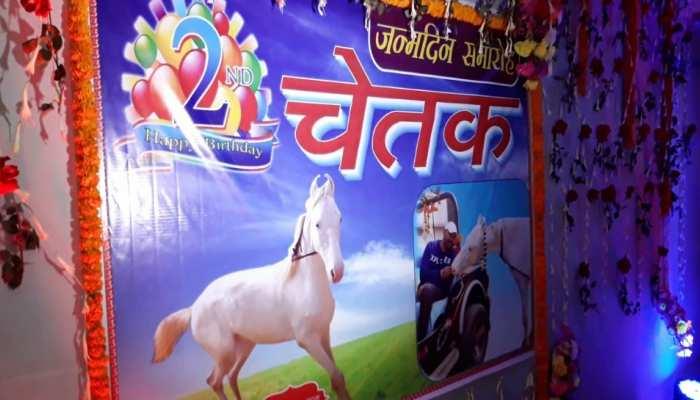 Saharsa: घोड़े के Birthday पर कटा 50 पाउंड का केक, DJ की धुन पर जमकर हुई मस्ती