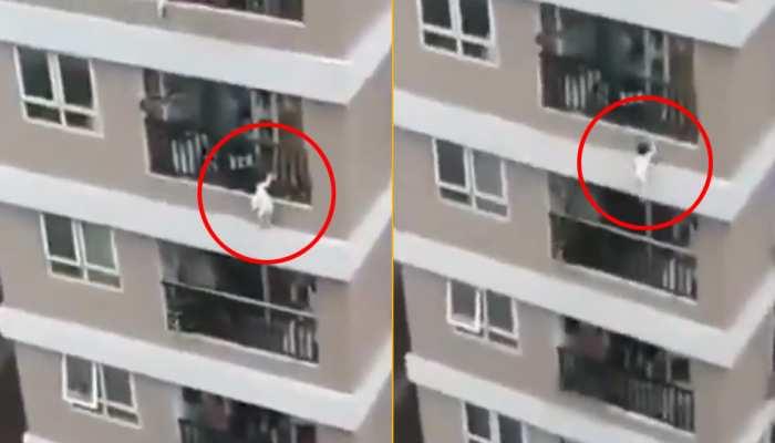 मसीहा बना Delivery Boy: 12वीं मंजिल से गिरी बच्ची को सुपरमैन की तरह किया कैच, देखिए VIDEO