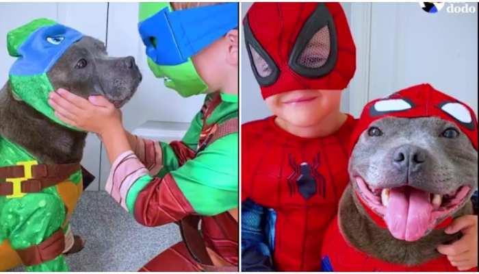 Social Media पर वायरल हुई दोस्ती की मिसाल, देखिए Cute Kid और Dog का वीडियो