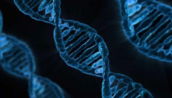 UP: 12 साल की उम्र में हुआ था Rape, अब बच्चे के DNA टेस्ट से Rapist को खोज रही Police
