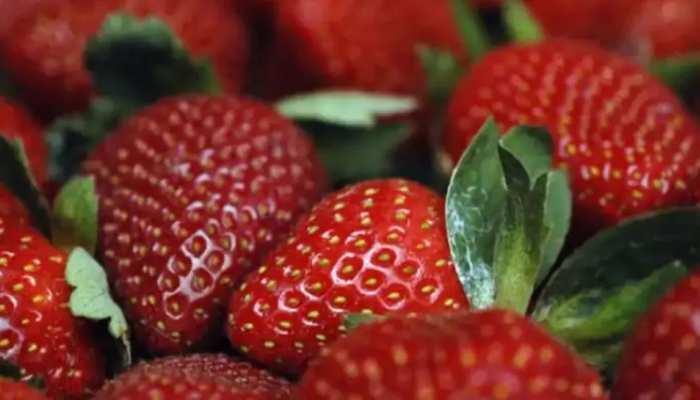 महिला ही नहीं पुरुषों के लिए भी खास है स्ट्रॉबेरी, इन चीजों में दिखाती है कमाल