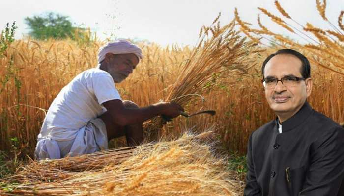 किसानों के काम की खबरः मौसम की मार के बाद सरकार ने दी बड़ी राहत, जानिए क्या है मामला