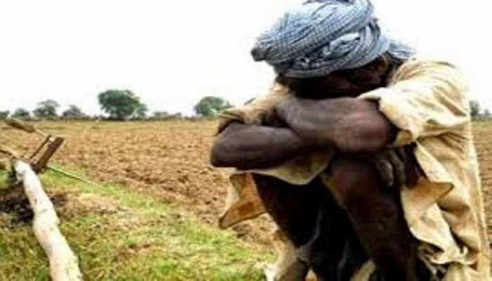 Jaisalmer: Pak की तरफ से आए तूफान ने मचाया 'तांडव', फसलें तबाह होने से किसान मायूस