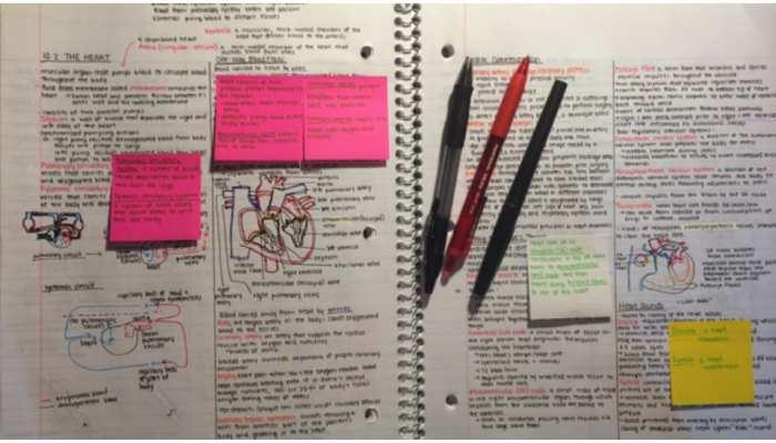 Board Exams 2021 में अच्छे Marks स्कोर करने हैं तो ऐसे बनाएं Study Notes