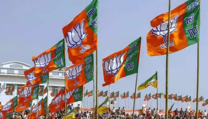 Madhupur Bypoll 2021: JMM-कांग्रेस का BJP पर हमला, कहा-बोरो प्लेयर के सहारे जीत की कोशिश कर रही पार्टी