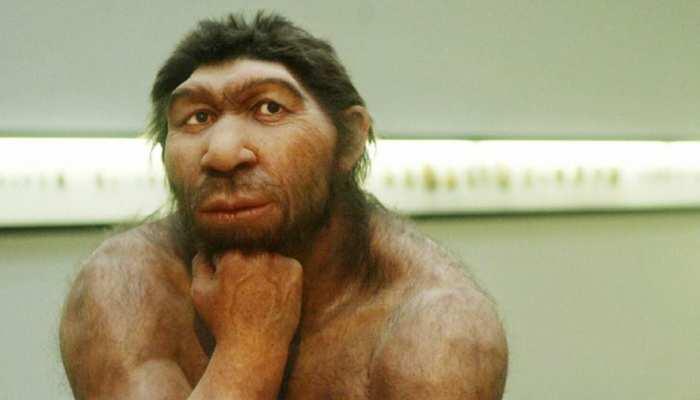Neanderthal Extinction: वैज्ञानिकों को मिली बड़ी सफलता! जानें कैसे विलुप्त हुए थे आदिमानव, विनाशकारी इतिहास दोहराने के करीब पृथ्वी
