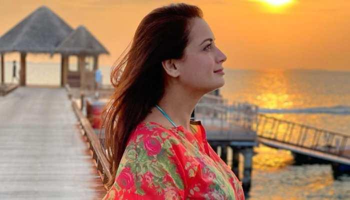 Dia Mirza शादी के पहले हुईं प्रेग्नेंट, यूजर ने किया ट्रोल तो एक्ट्रेस ने दिया दिल जीतने वाला जवाब