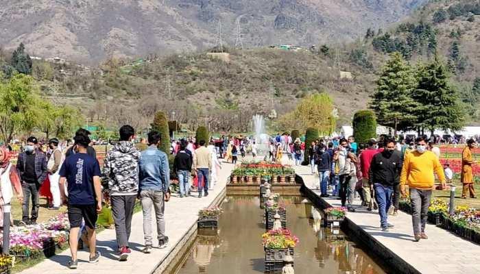 Kashmir में उमड़ रही है पर्यटकों की भीड़, Tulip Garden बना आकर्षण का केंद्र