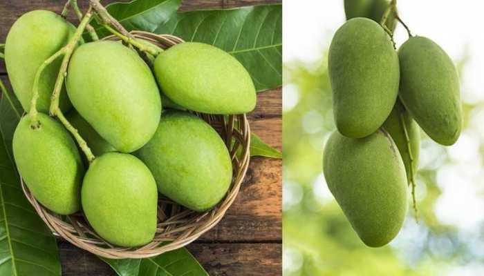 गर्मियों में इस चीज के साथ करें कच्चे आम का सेवन, मिलेंगे जबरदस्त फायदे, शरीर में दिखेगा यह बदलाव