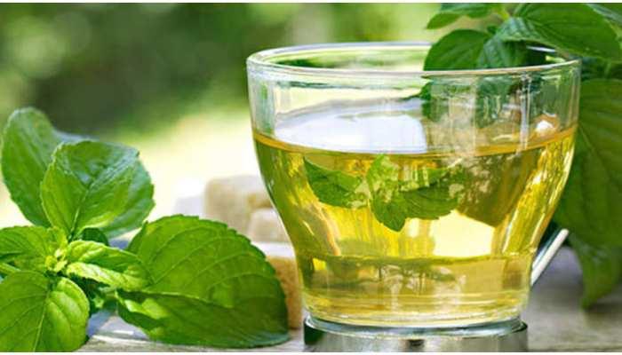 Mint Tea Recipe: गर्मियों में पीएं पुदीना चाय, शरीर को मिलेगी ठंडक
