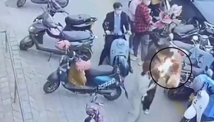 सड़क पर चल रहे शख्स के कंधे पर टंगा बैग यूं  बन गया 'आग का गोला', वायरल हुआ ये चौंकाने वाला VIDEO