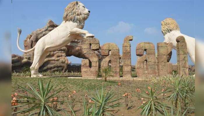 इटावा Lion सफारी पहुंचा कोरोना वायरस, दो शेरनियां 'जेनिफर' और 'गौरी' मिलीं कोविड पॉजिटिव