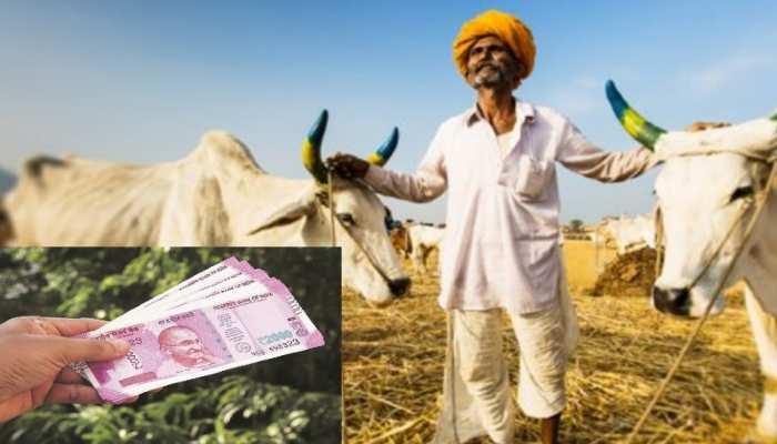 PM Kisan: खाते में अबतक नहीं आए 8वीं किस्त के 2000 रुपये! तुरंत यहां करें शिकायत, मिल जाएंगे पैसे