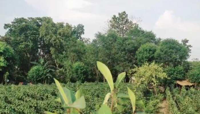 भारत की लंका: कोरोना तो दूर यहां 50 सालों में किसी को कोई बीमारी नहीं हुई, ग्रामीणों ने बताई इसकी वजह