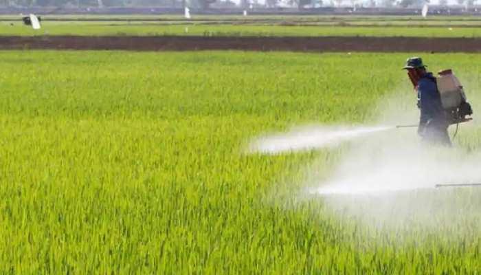 Jharkhand: खाद की कालाबाजारी पर कृषि विभाग सतर्क, कहा- जांच के बाद वेंडर के लाइसेंस होगें रद्द