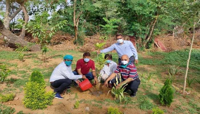 Rajasthan में शुरू किया गया पौधारोपण अभियान, 31 जुलाई तक लगाएंगे 1 लाख पौधे