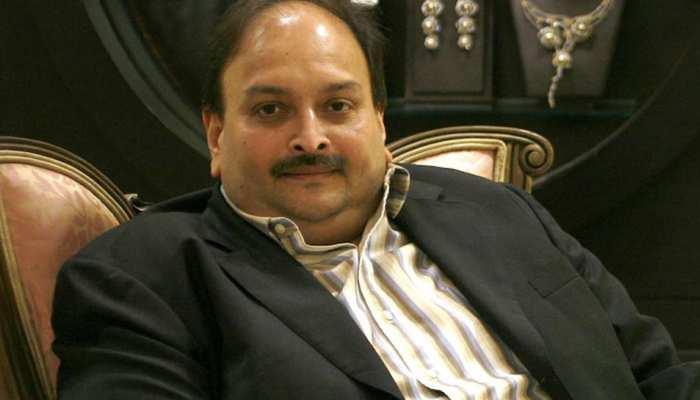 PNB Fraud Case: Mehul Choksi को भारत लाने की कोशिशें तेज, पैरवी करने Dominica भेजा जा रहा ये मशहूर वकील