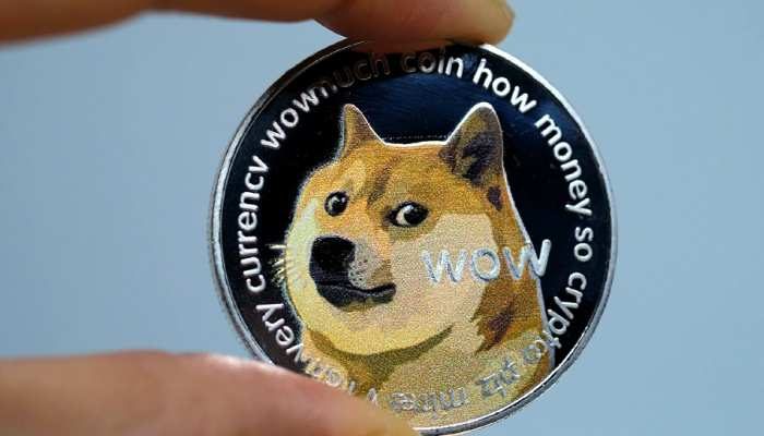 Japanese Dog Shiba Inu memes auctioned for 29 crore 29 lakh rupees in NFT