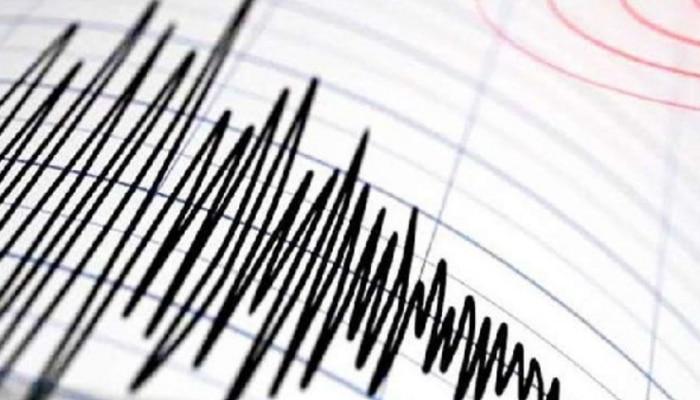 दिल्ली के पंजाबी बाग में लगे भूकंप के झटके, बीते साल 51 बार कांपी थी राष्ट्रीय राजधानी