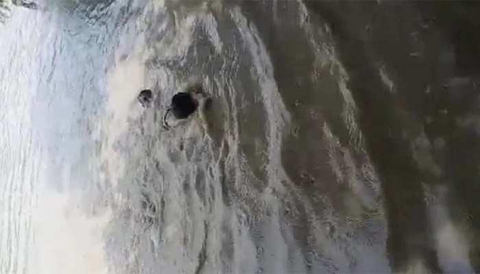 UP POLICE के एक सब इंस्पेक्टर ने डूबते हुए शख्स को बचाने के लिए नदी में लगाई छलांग, देखें VIRAL VIDEO