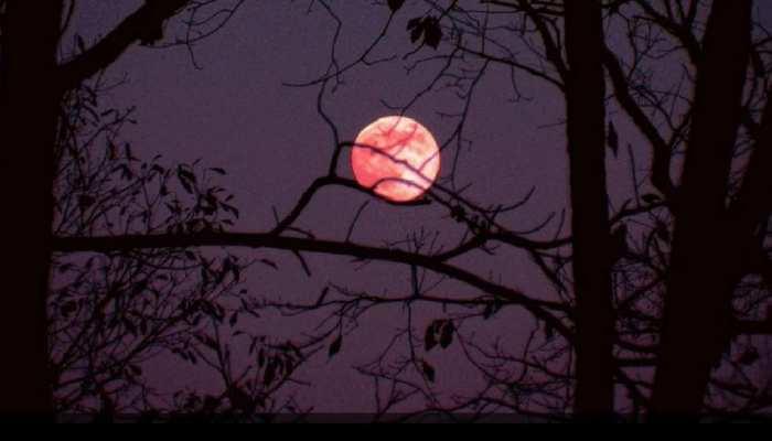 strawberry Moon Honey Moon Rose Moon Hot Moon supermoon rise on 24 June