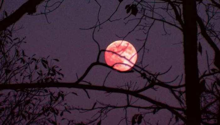 आज आसमान में दिखेगा रेड मून का नजारा, जानें इस अनोखी खगोलीय घटना के बारे में