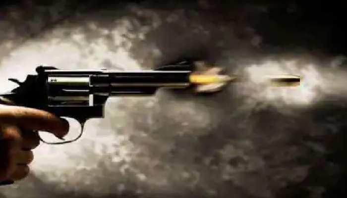 आगरा में मानवता हुई शर्मसार! शख्स ने कुत्ते की गोली मारकर की हत्या