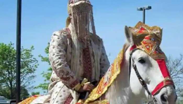 बीच बारात से दूल्हे को भगा ले गई घोड़ी, वीडियो हुआ वायरल तो लोटपोट हुए लोग