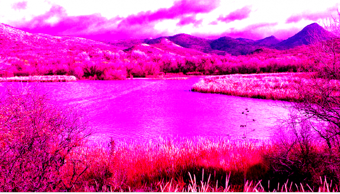 pink pollution in patagonia argentina caused by sodium sulfite