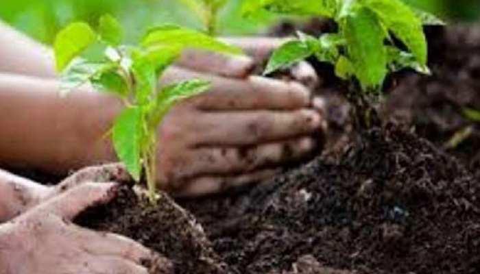 किसानों के फायदे के लिए सरकार लाने जा रही है ये योजना, निजी क्षेत्र में हो सकेगा पौधारोपण! जानिए पूरी डिटेल्स